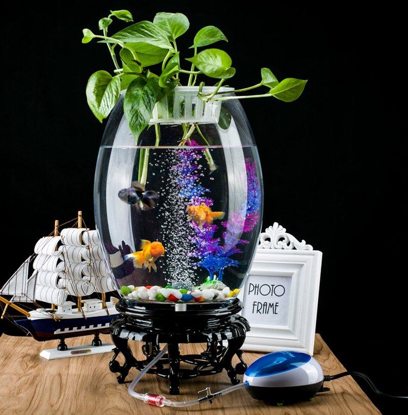 Bể cá cảnh mini đẹp dành cho văn phòng BC001