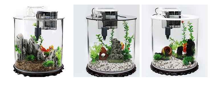Các kiểu bể cá mini hình trụ tròn 2