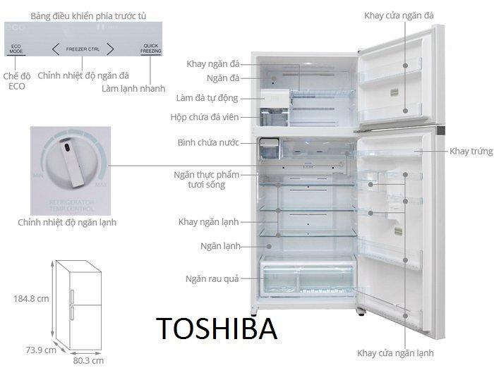 Kích thước tủ lạnh TOSHIBA 600l