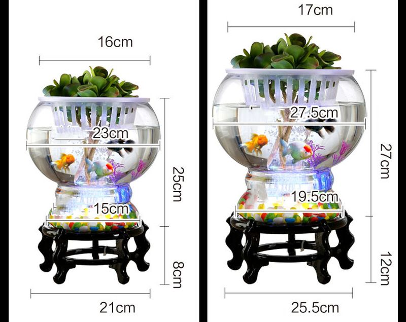 Kích cỡ Bể cá mini để bàn phát sáng BC004