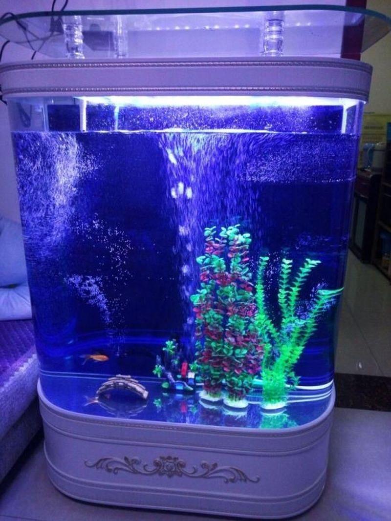 Ảnh thật tủ Bể cá thủy sinh BC005